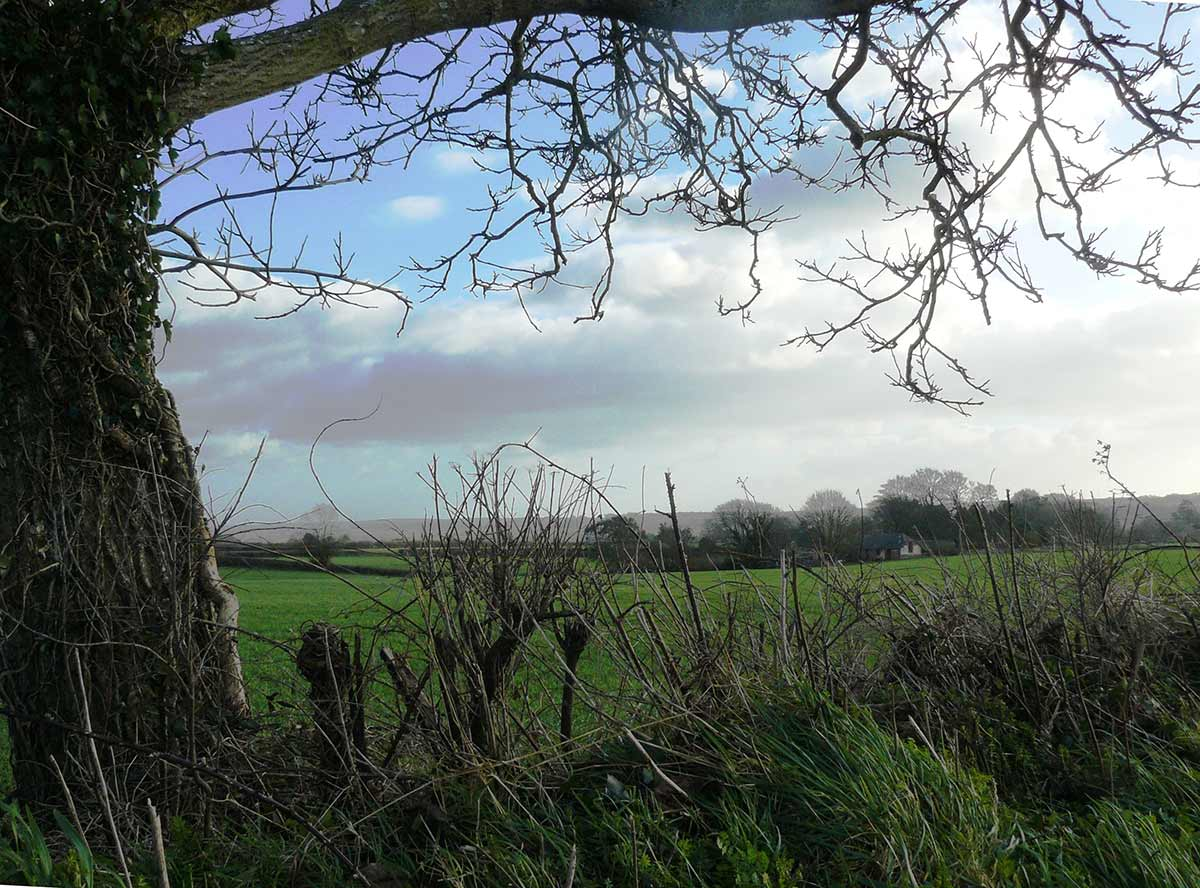 Stand - Campaigning to save the area north of Dorchester – North of Frome Whitfield Lane